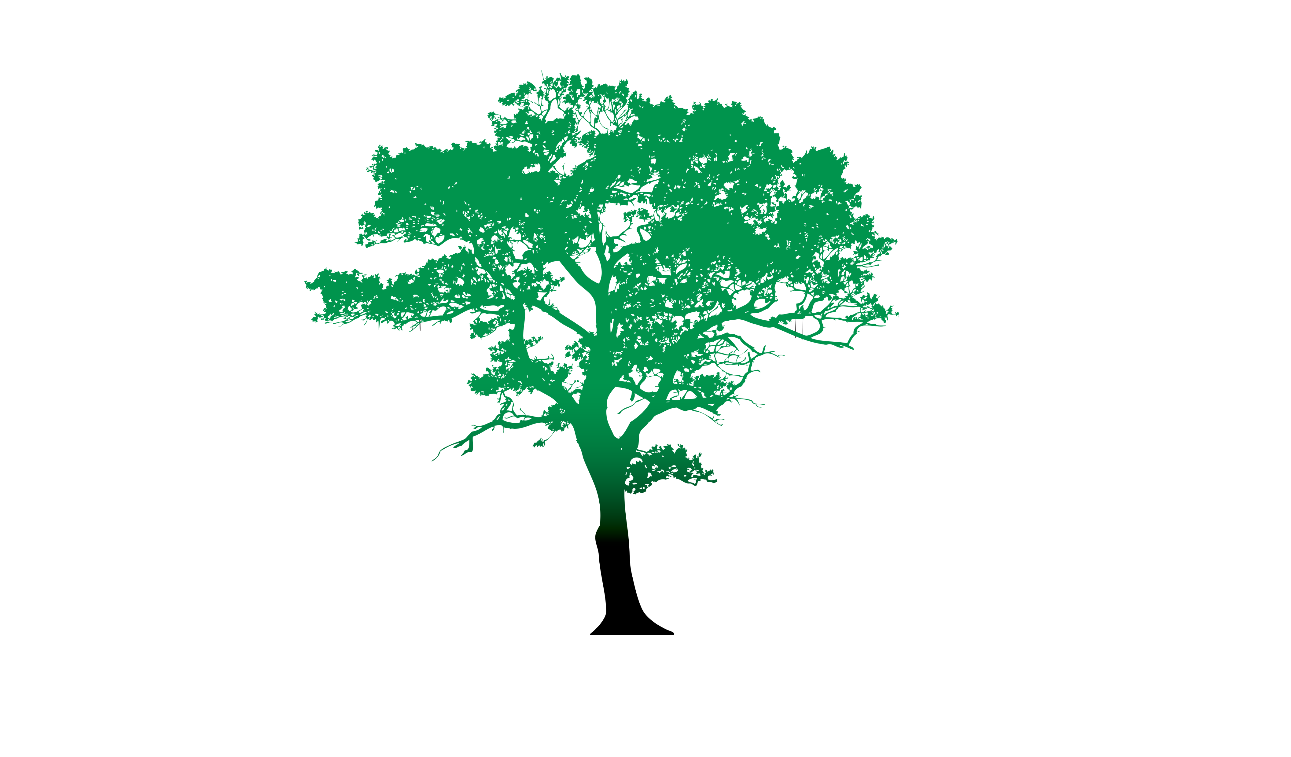StromExpert